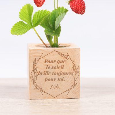Ecocubes - plantes dans cubes en bois avec gravure