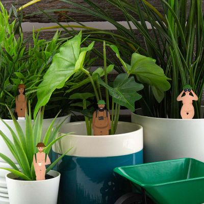 Figurines Pot de fleurs Nudistes