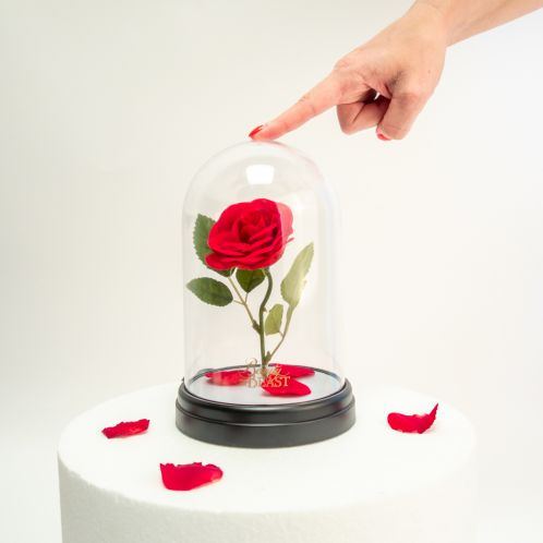 Lampe Rose Enchantée - La Belle et la Bête