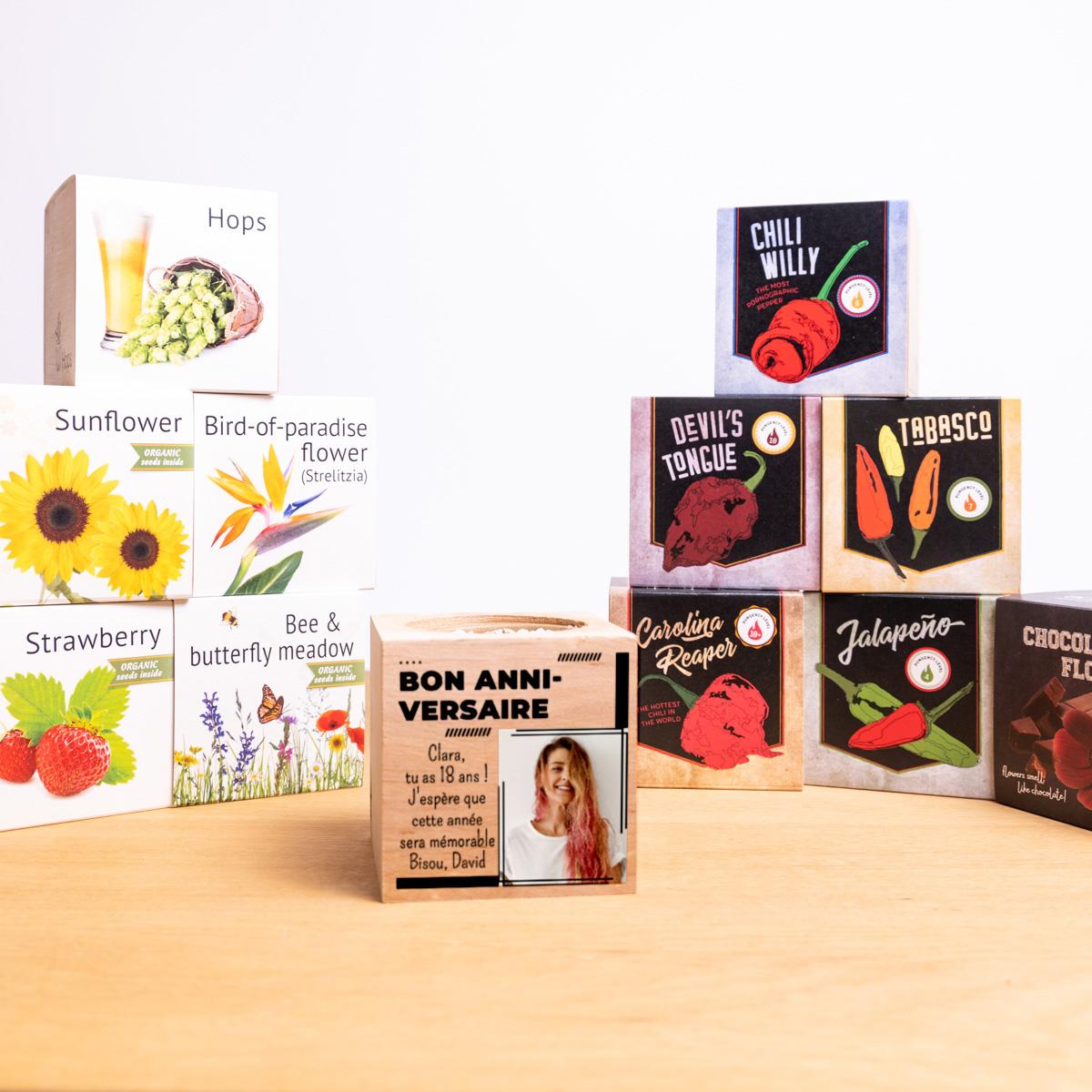 Ecocubes - Plantes dans cubes de bois avec photo et texte