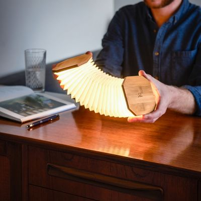 Lampe Accordéon Gingko