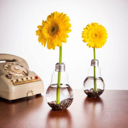 Set de 6 Vases ampoules