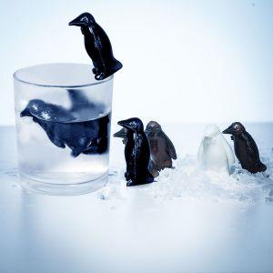 Pingouins refroidisseurs