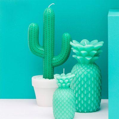 Cadeau fête des mères - Bougie Cactus