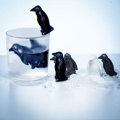 Maison et habitat - Pingouins refroidisseurs