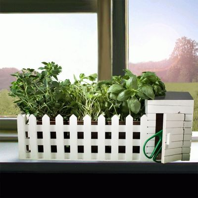 Idées cadeaux parents - Mini jardin d'intérieur