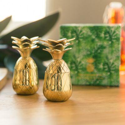 Cadeau fête des mères - Verres à shot en métal Ananas