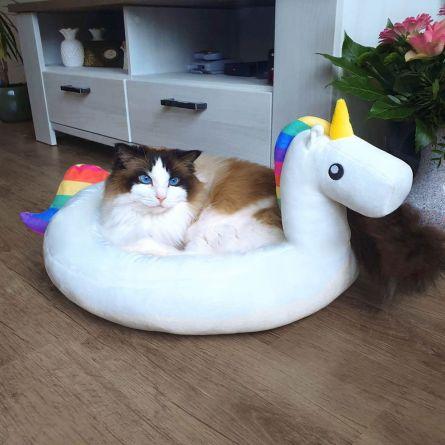 Panier pour chat et chien Licorne