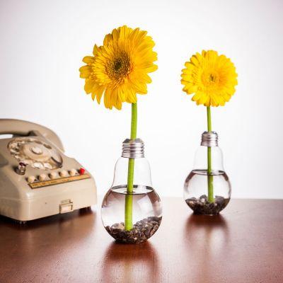 Cadeau couple - Set de 6 Vases ampoules
