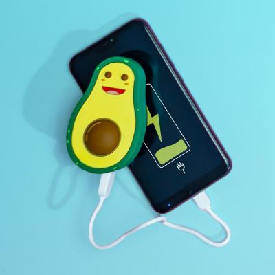 Chargeurs - Batterie de secours Avocat