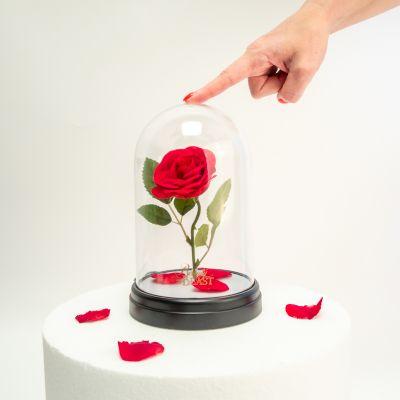 Sale - Lampe Rose Enchantée - La Belle et la Bête