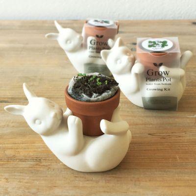 Plaisirs gustatifs - Pot de fleurs Chat ou Lapin