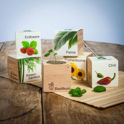 Cadeau 50 ans - Ecocube - plantes dans cubes en bois