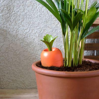 Cadeau Pâques - Arroseur Care It pour pots de fleurs
