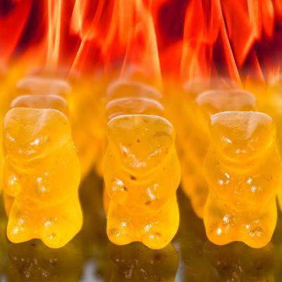 Cadeau d'Halloween - Des oursons diablement piquants !