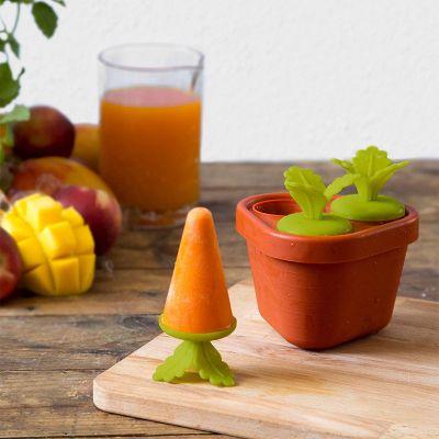 Cadeau Pâques - Veggie Popsicle – Moule à esquimaux