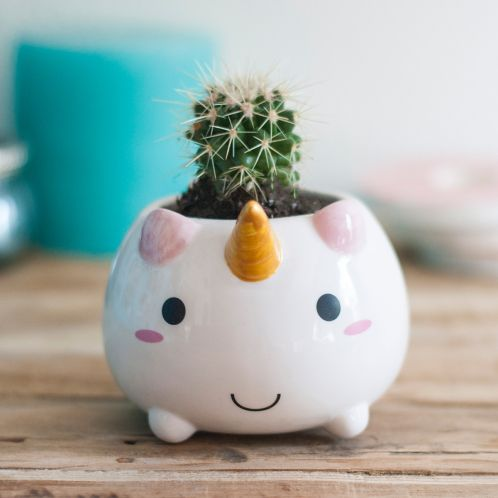 Idée cadeau - Mini Pot de fleur Licorne