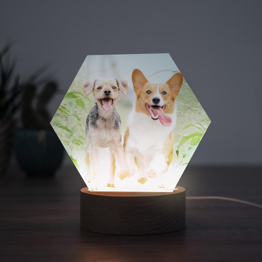 Cadeaux pour animaux Lampe LED avec photo